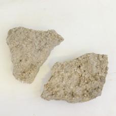 2x Trochitenkalk Formation - Fossil plate