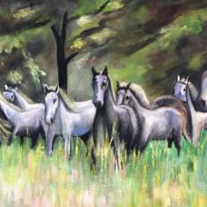 Oil on Canvas – Srečko Majcenič - Lipizzaners